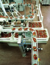 VarioFlow S Chain Conveyor System: Smart Solutions for Fast, Hygienic Transport