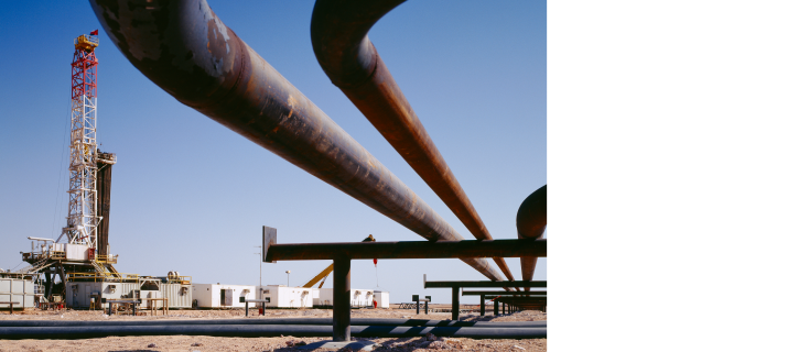 Reliable performance for the oil and gas industry